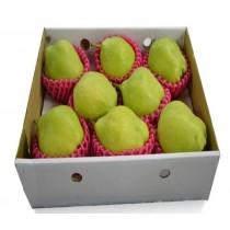 梨山馥梨禮盒 珠寶梨 (6~12粒裝)