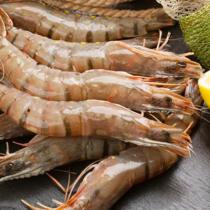 越南草蝦(8尾) 450g